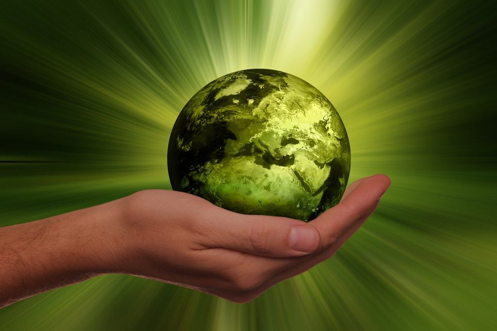 Sustainable and ecofriendly lifestyle choices to save the planet and reverse climate change