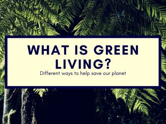 Ways to live a greener, healthier and more environmentally friendly life
