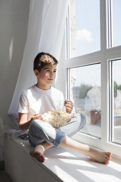 Sunlight Window – Green Living Room