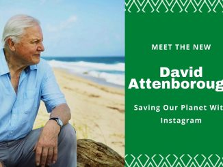 Meet The New David Attenborough Saving Our Planet With Instagram
