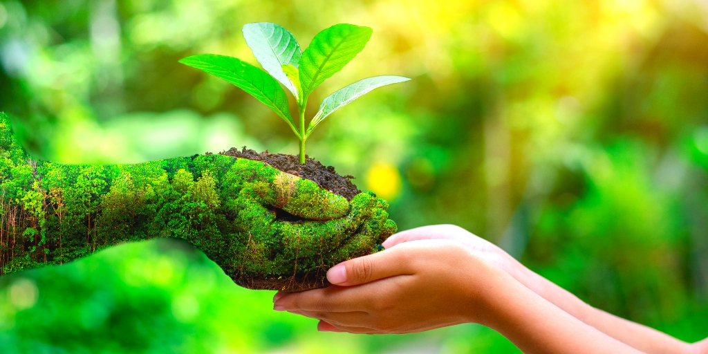 Adapt more Eco-Friendly Practices in your Life