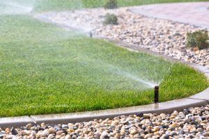 Save Water for Sustainable Backyard Upgrades
