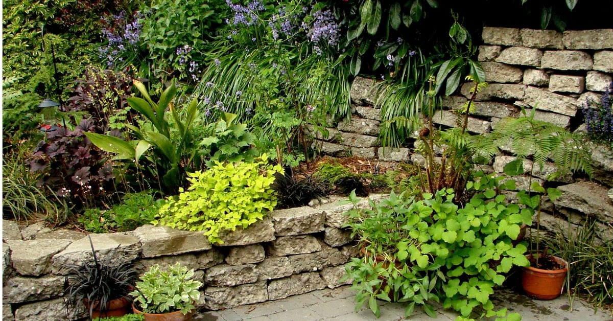 Use natural heat for your Backyard