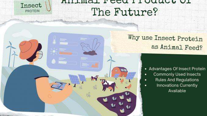 Sustainable Animal Feed Product